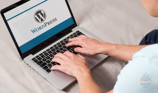 Курс  CMS WordPress Вордпресс с «нуля»