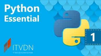 Базовый курс Python